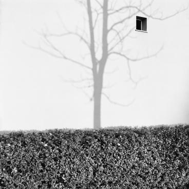 Fotografia di Gian Marco Magnani, Faenza, dicembre 2014
